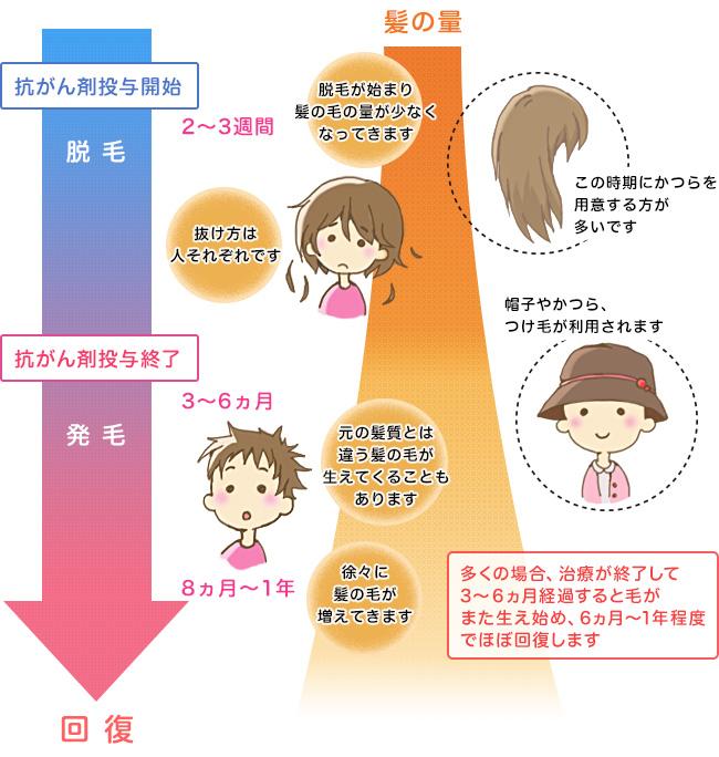 http://www.cancernet.jp/datsumou/flow