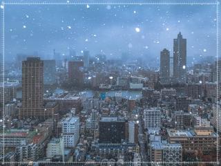 寒い雪の画像