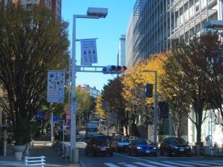 欅坂46の由来のけやき坂画像