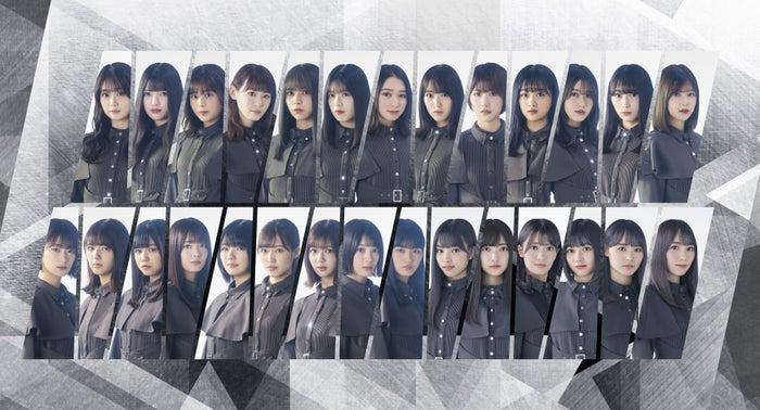 櫻坂46画像